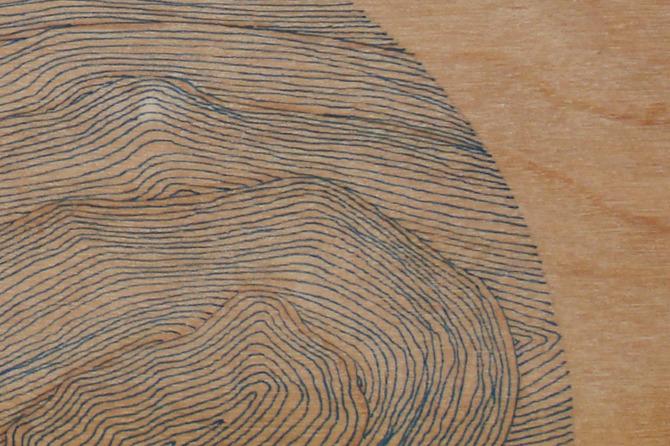Drawings on Wood - tim hallinan